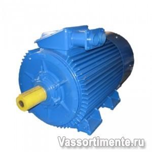 Электродвигатель АИР 355S2