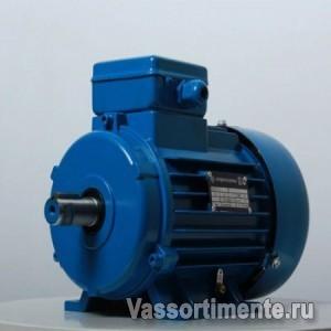 Электродвигатель АИР 355М6