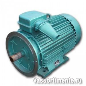 Электродвигатель 5АМ 315S2