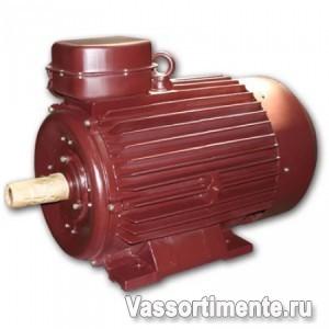 Электродвигатель 5АМ 315S6