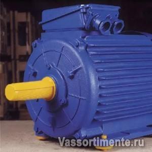 Электродвигатель АИР 355М2