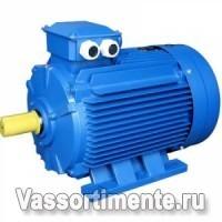 Электродвигатель АИР 355М8